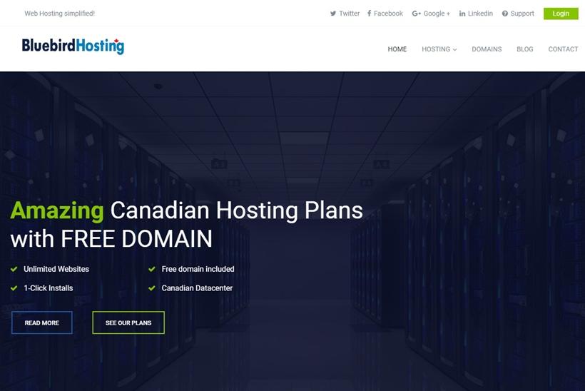 Web Hosting News - Web Host Bluebird Hosting to Offer